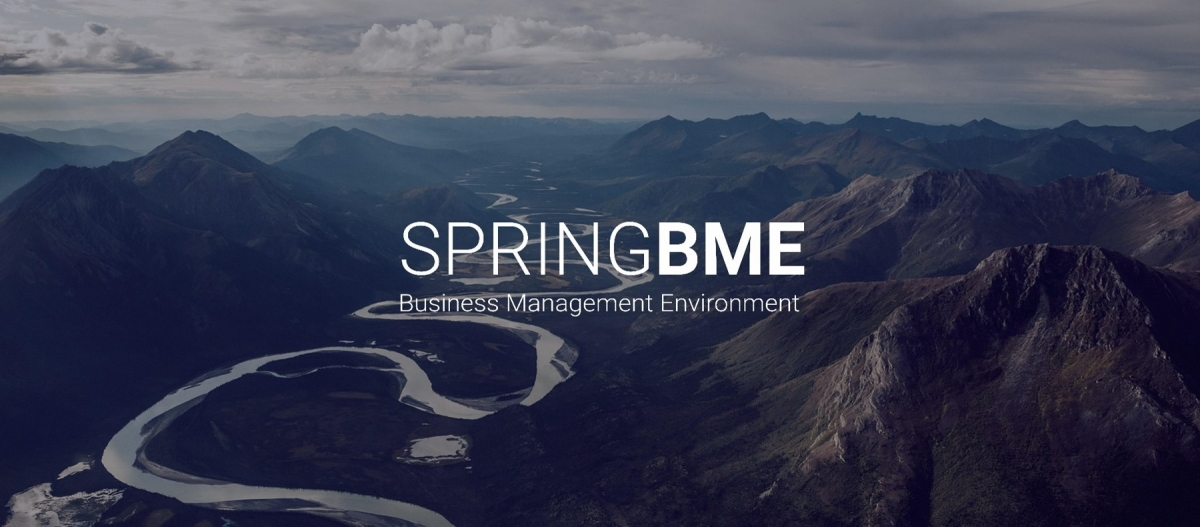 Spring BME: A New Concept for Business Management