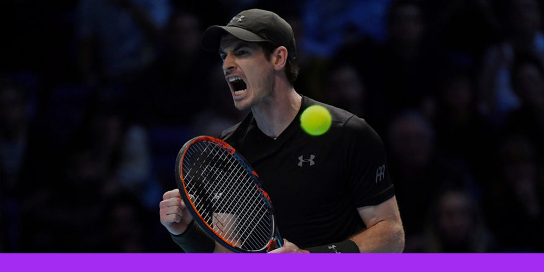 Andy Murray reaches French Open semi-finals
